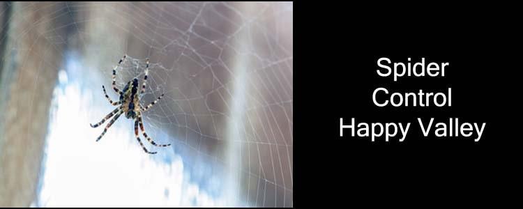 Spider Control Happy Valley